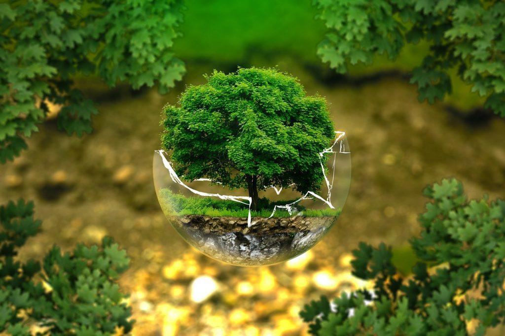 ökologisches produktdesign