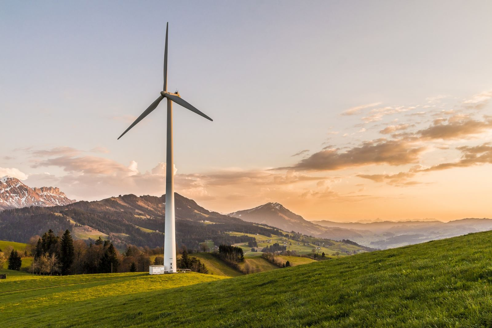 alternative energie grass af