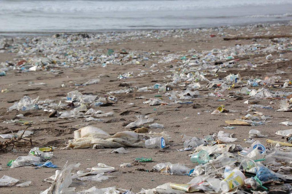 Grass AF - the ocean cleanup grass af